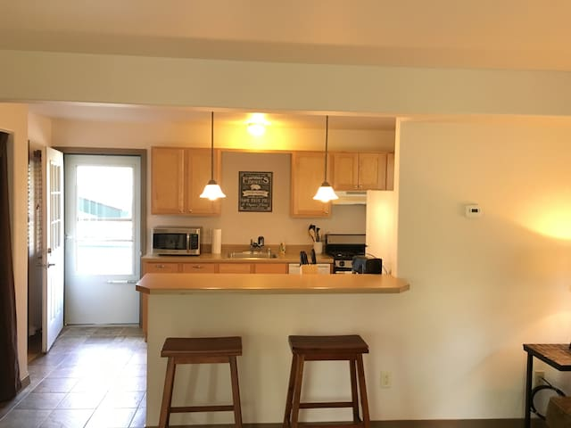 Cozy Condo near downtown & UM !