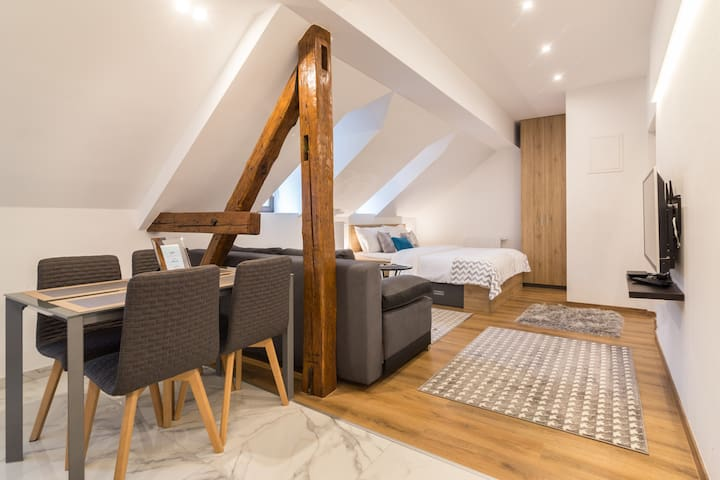 Design Duplex Loft in the Old Town Zagerb