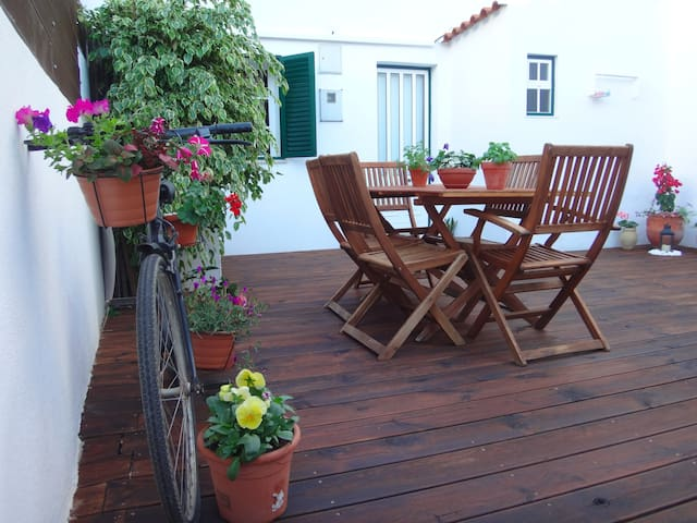Backyard House, Faro