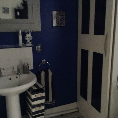 Victorian Home in conservation area - Hounslow - Ev