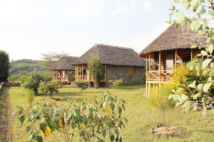 The Pelican Lodge - Lake Elementaita