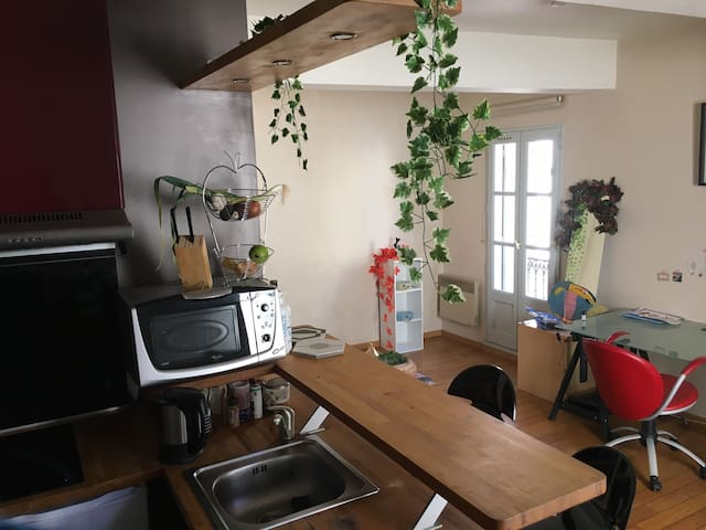2 rooms studio in historic center - Montpeller - Pis