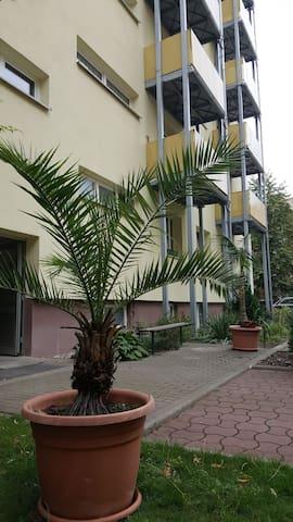 """Wohnung im """"Palmental"""""""