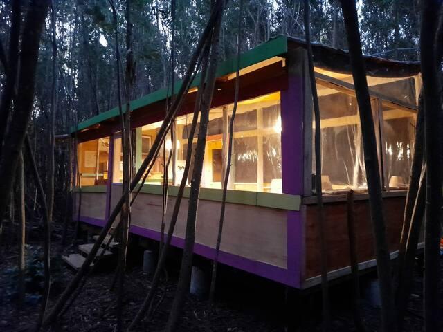 Cabaña de artistas en el bosque, ambiente familiar