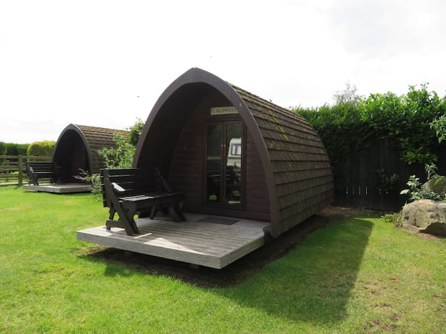 Small Camping Pod (2 adults, 1 child), N Yorks