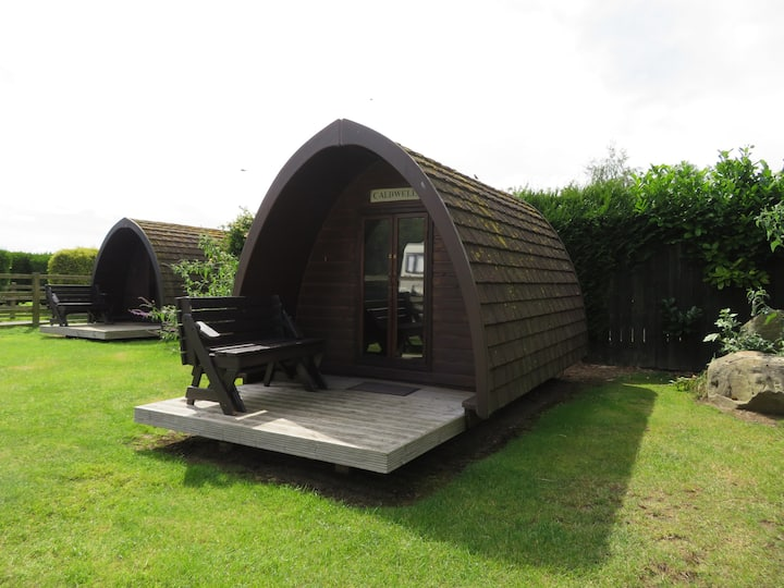 Small, Dog Friendly, Camping Pod