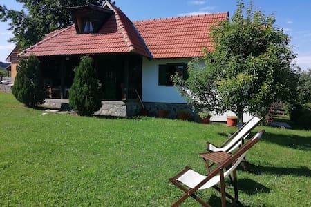 Camping Viljamovka
