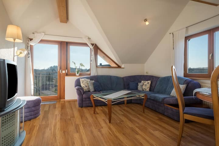 """Spacious Holiday Apartment """"Friedrichshafen"""" on Farm near Lake Constance with Mountain View, Wi-Fi, Balcony, Terrace & Garden; Parking Available"""
