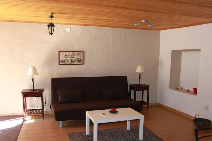 Quinta da Azervada -Casa do Maioral - Coruche - Villa