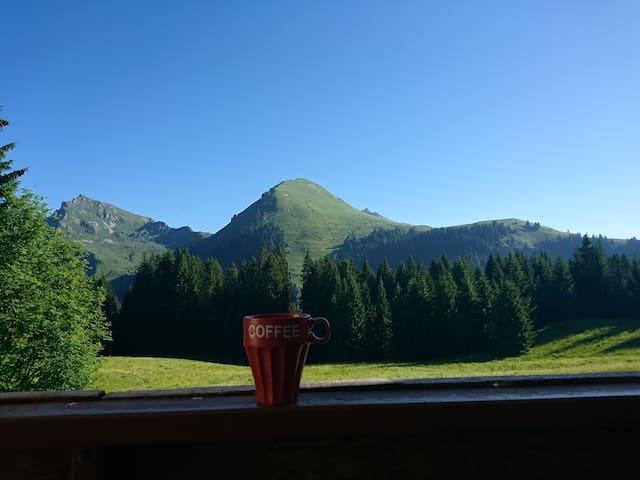 Charmant studio à la montagne -Le Praz de Lys