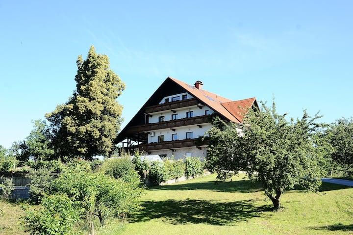 Turistična kmetija Apat/Country House Apat
