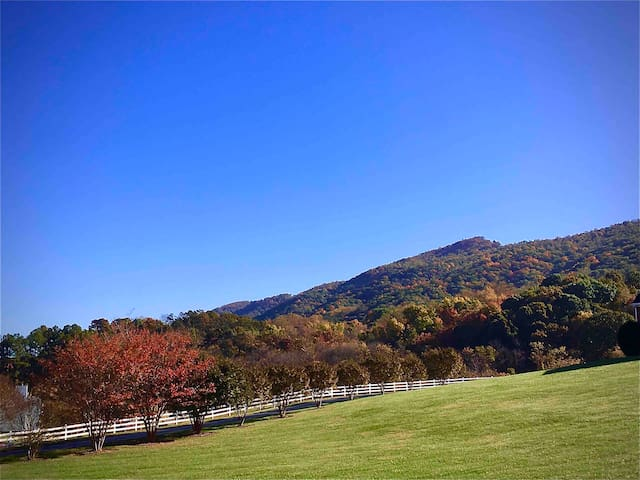 Fall~Awesome View of the Blue Ridge