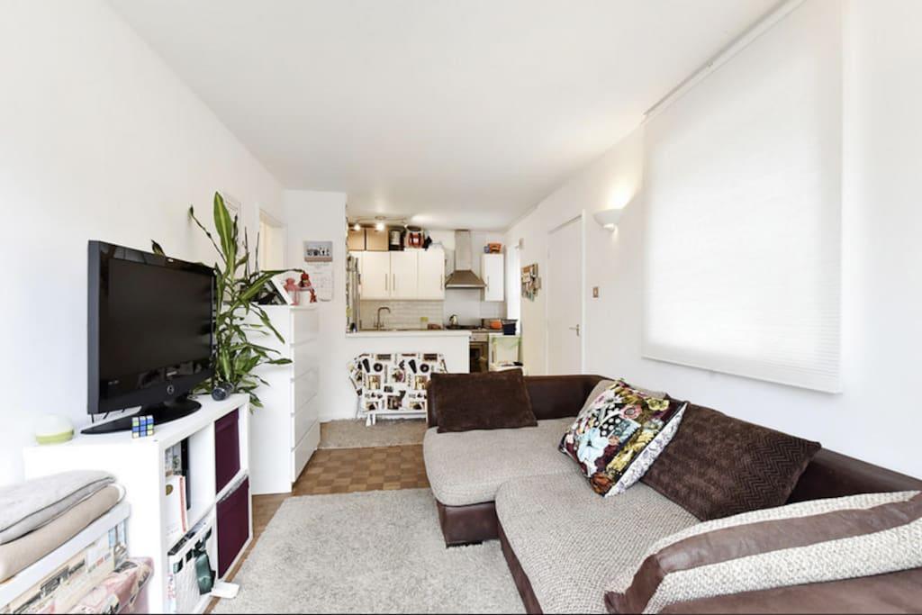 Open Plan Living / Kitchen