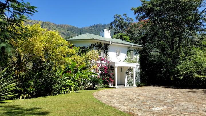 7 Bedroom Plantation House