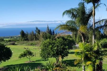 Aloha Cottage Upcountry Epic Views in Kohala