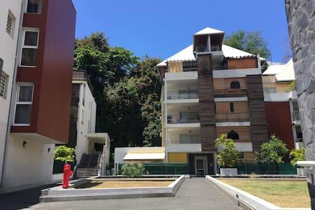 Beau T2 Saint Denis Réunion (capitale)