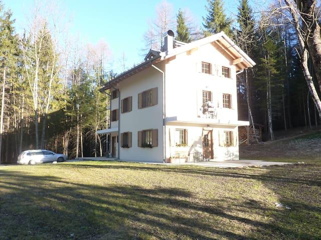 Appartamento a 30 minuti da Cortina D'Ampezzo - Pozzale - Appartement