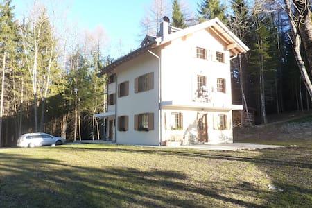 Appartamento a 30 minuti da Cortina D'Ampezzo - Pozzale - Apartamento
