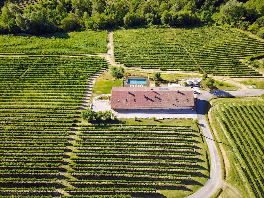 The cascina from above, nestled among the vines