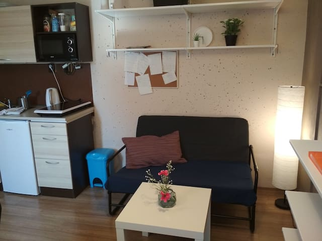 MiniHouse,quiet suburb/35min center, fare discount