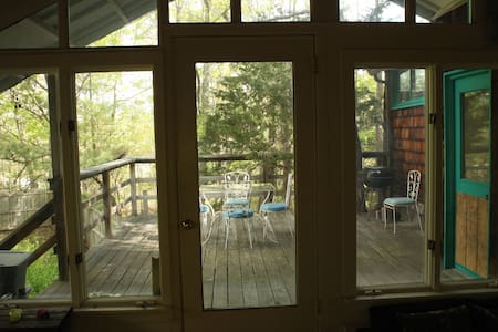 Windows Looking Into Sunny Forest - Kerhonkson