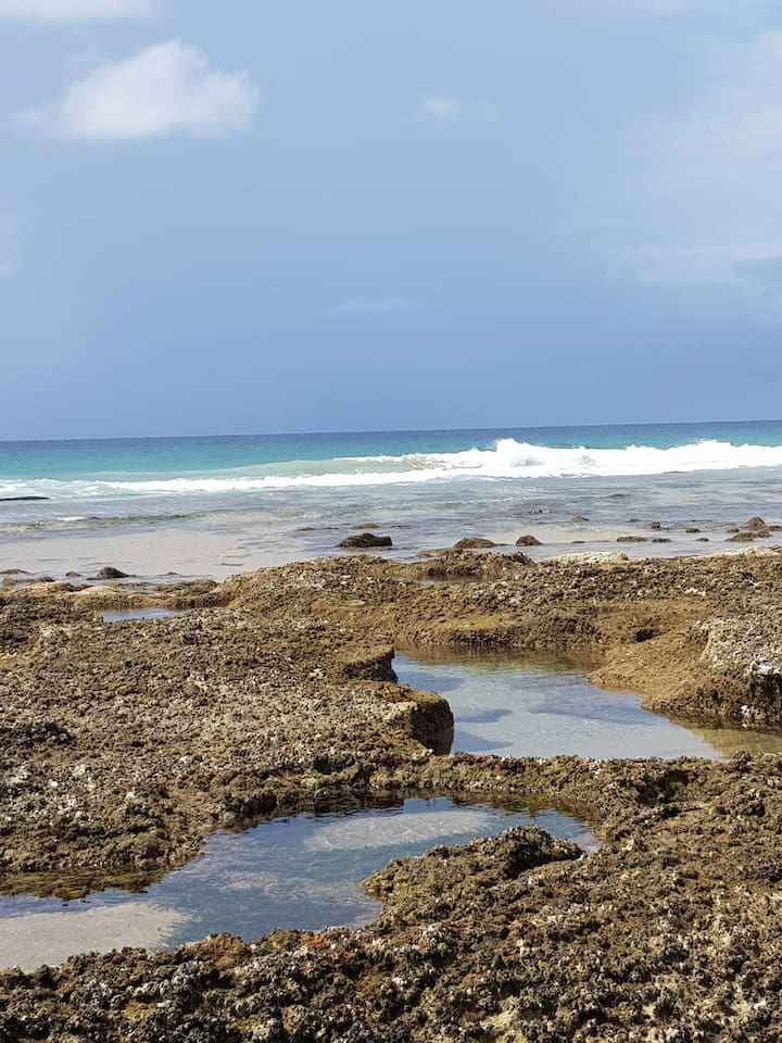 Incredible rock pools on Malongane's main beach - just 800m to the north from Vista Alta's beach entry point