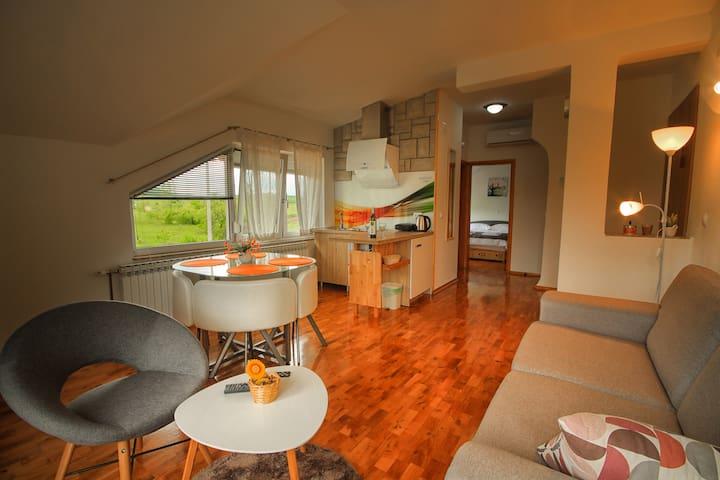 Superior Apartment Olga
