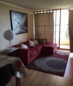 Apartamento en Barrio Bellavista - Recoleta