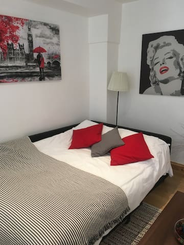 CLEAN PRIVATE APARTMENT IN CENTRAL LONDON