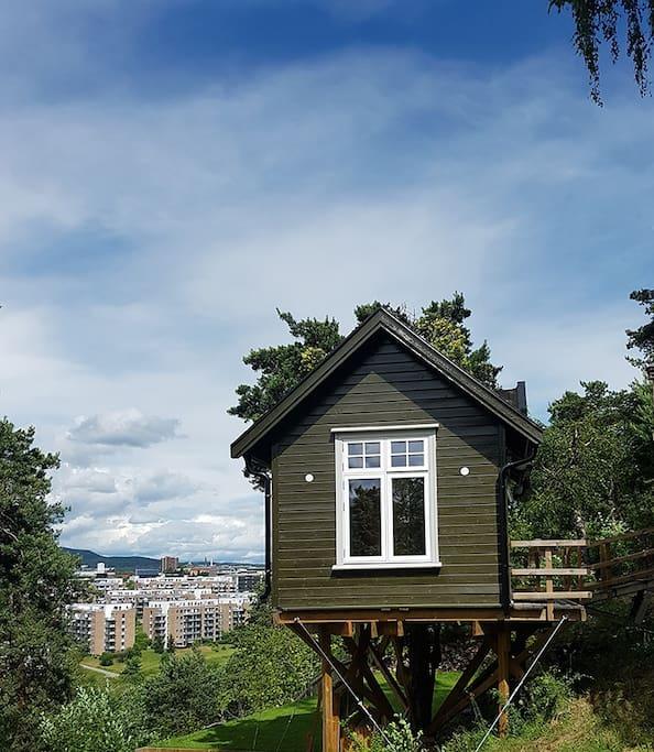 Exclusive tree house