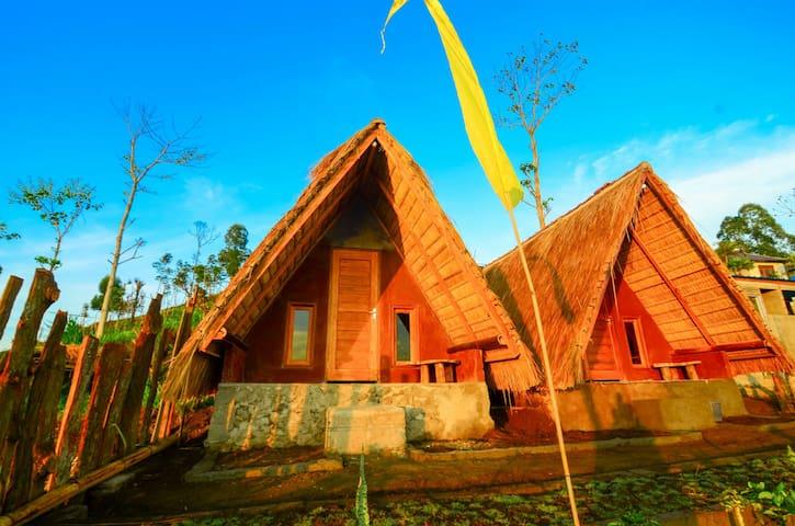 Jungle Retreat  Hut