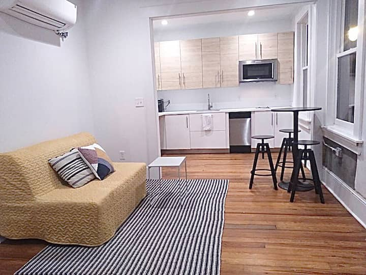 Gorgeous light filled downtown apartment for 4