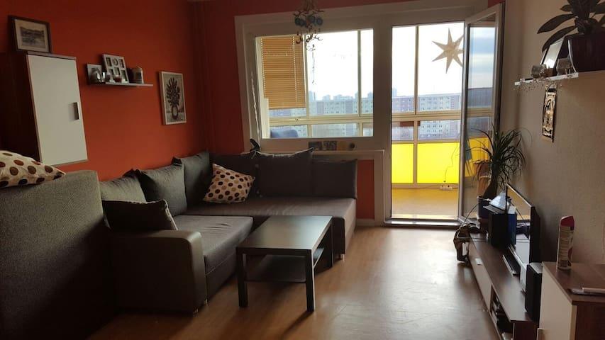 Große, ruhige Wohnung - Berlin - Apartment