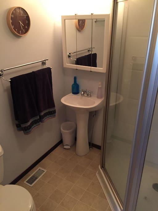 master en suite bathroom with all amenities