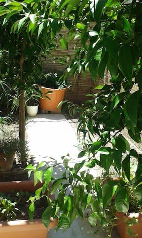 ησυχη γκαρσονιέρα κήπου
