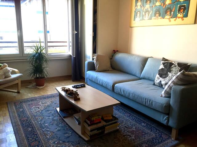 Cozy room in a great location - Genève - Flat