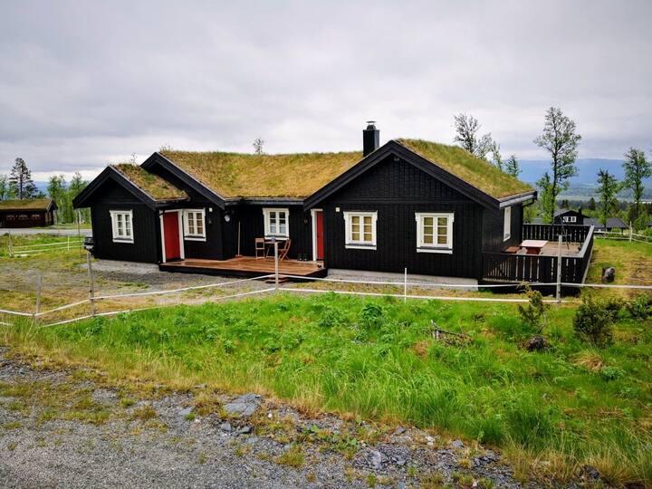 Flott hytte i Bualie, Golsfjellet.
