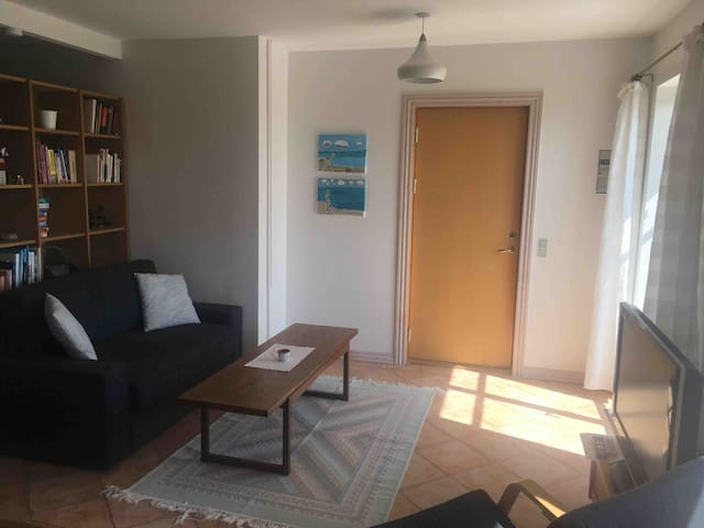 Livingroom with sofabed