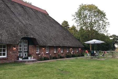 Apartment Süderfeld 50 m2