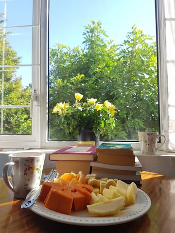 A recent guest who stayed for 2 months gave me this pic of her breakfast in the room - this could be you ... what's not to love :-)