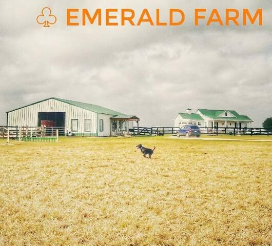 EF Main House@ horse farm - Waller - Haus