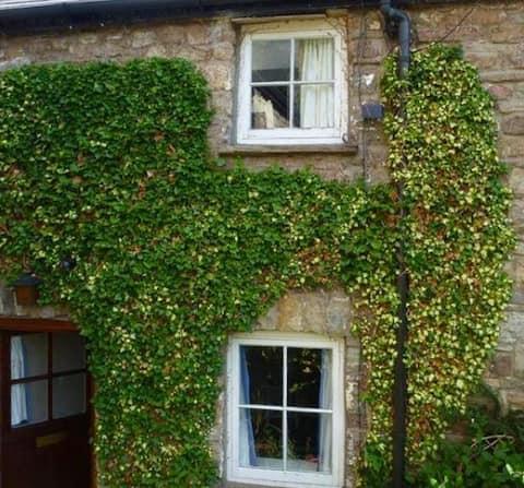 Picturesque Cottage