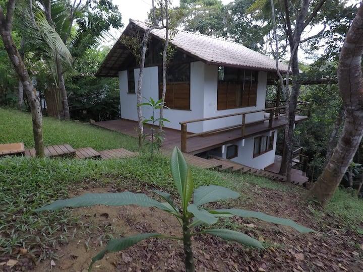 Casa Cedro-Amarelo, Floresta de Jeribucaçu/Itacaré