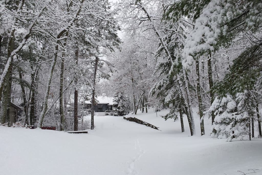 Recent snow - short drive to x country ski trails!!