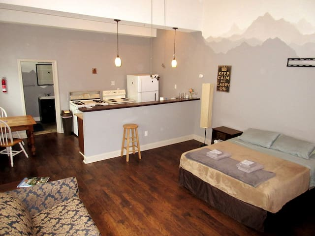 Spacious Studio Apt in Heart of the Arts District!