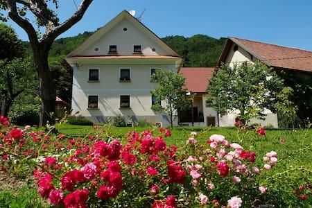 Slovenia FARM STAY Zelinc - B&B - Cerkno - B&B