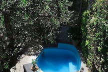 FICUS- Three Bedrooms Apartment with Garden View