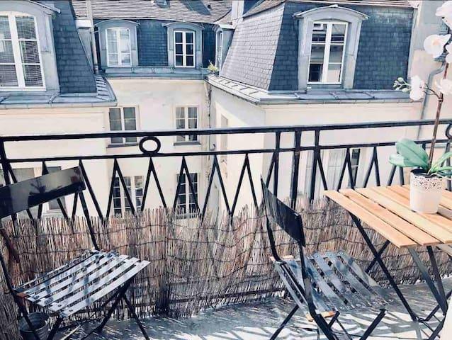 Avec balcon Centre de Paris : Marais, châtelet