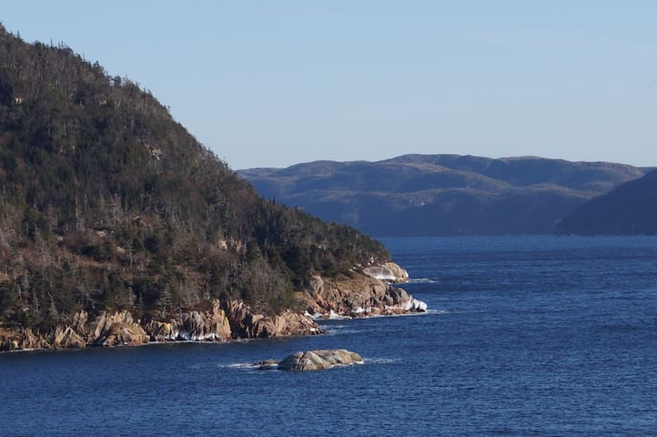 the fiord