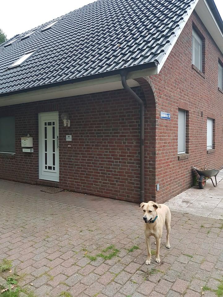 Henstedt-Ulzburg,ELW, 60m²,hell,barrierefrei,ruhig